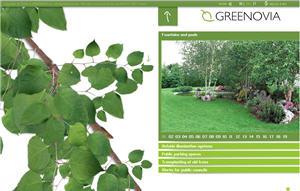 Greenovia